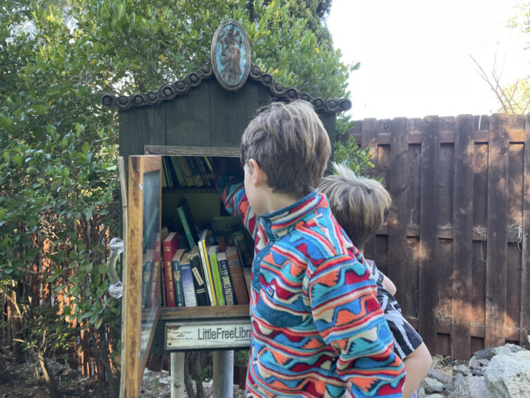 7 - Visit a Free Little Library
